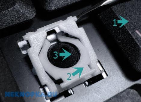 Схема крепления кнопки ноутбука